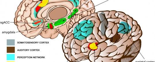 D-Cycloserine:  A novel treatment for tinnitus?
